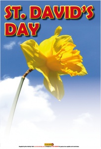 St. David's Day Poster